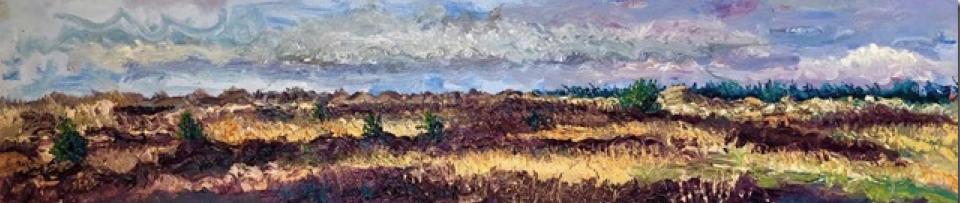 """gertjan scholte-albers - """" Duinen Texel 1 """" - olieverf op linnen – 40 x 180 cm."""